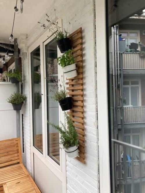 Teak plant wall rack - 30 x 120 cm