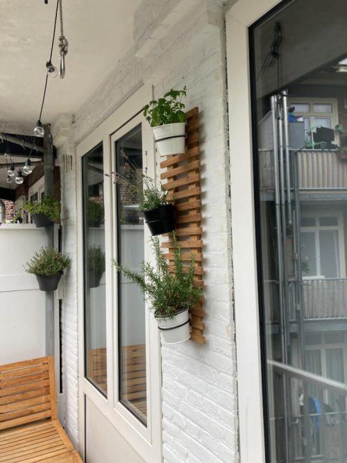 Teak plant wall rack - 30 x 90 cm