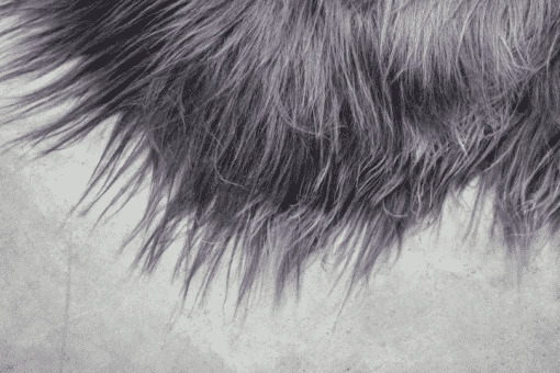 Donkergrijze IJslandse schapenvacht