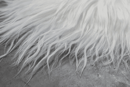 White Icelandic Sheepskin Rug detail
